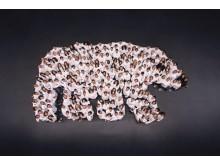 Jääkarhutaideteos sadoista ihmisistä