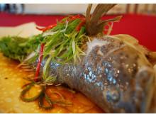 清蒸石斑鱼Steamed Garoupa
