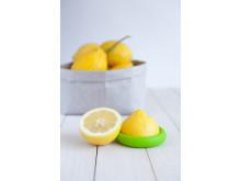 Matlock - Citron 2