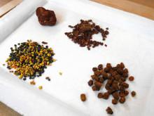 Propolis, bibröd, och pollen