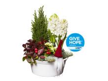 Give Hope-julgruppen på Interflora.se