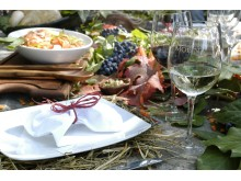 VsP food and wine