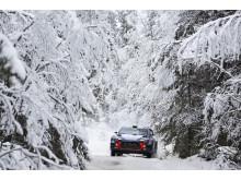 Hyundai Motorsport laddar för revansch i Rally Sweden.