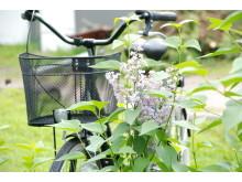 Cykel och blommor