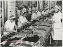 Personal i Maraboufabriken i Sundbyberg, 1959