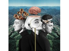Clean Bandit - What Is Love artwork