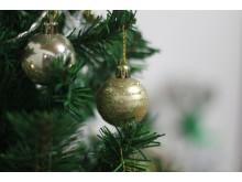 Juletræssalg på Frederikssund Museum. Kredit pixabay.com