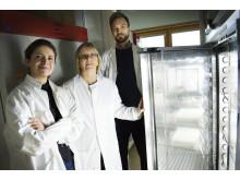 Forskarteamet vid Stockholms universitet
