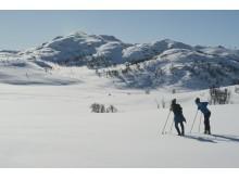 Langlauf in Vinje, Telemark