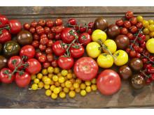 Velg norske tomater når bare det beste er godt nok.