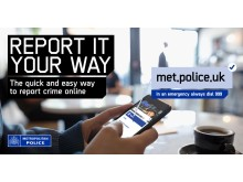 Report it your way image