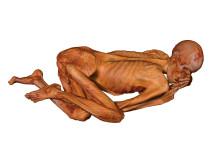 Geberleinmannen, mumie på British Museum