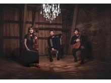 Trio Wolski_1mb