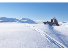 Moskahytta - åpen bu i Troms