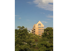 Folkhems höga hus i trä