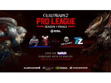 Guild Wars 2 eSports season finals poster