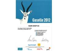 HairShop Gaselle 2012