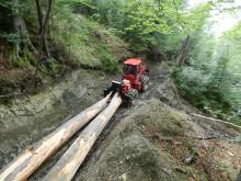 Stor utvecklingspotential i skogrikt land