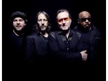 STOPPOK tritt mit seiner Band Mitte November 2016 im WERK 2 in Leipzig auf