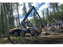 Largest forestry fair
