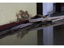Typisk billede af skimmelsvamp efter vandskade