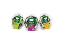 Panasonic Veggie Life salad range