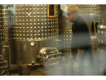 Bjorn in the winery