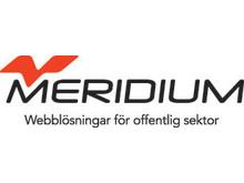 Meridiums logotype (lågupplöst)