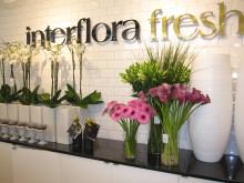 Interflora Fresh Blomsterdesign Marieberg/Örebro, skylt