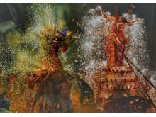1446554_1384075_0_© Kwan Wai Pang, National Awards, 3rd Place,  Hong Kong SAR, 2019 Sony World Photography Awards