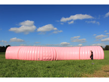 Faszination Darm - das größte Darmmodell Europas