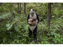 Pandas Gone Wild 2