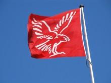 Falck - flag