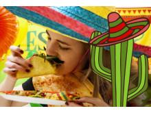 taco_äter_taco_kaktus