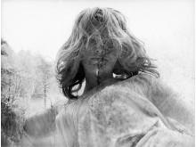Tallmaja - Agneta Ekman Wingate