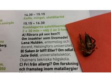 Äta insekter? Kostdagarna 2015_Bergström & Hellqvist