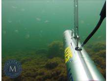 Medins Havs och Vattenkonsulter