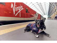 Platform Pawtroller Jake shows off his own special-edition Virgin Trains uniform, to celebrate the launch of the new range