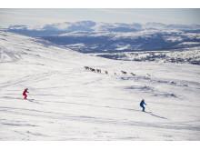 Åre skiing with reindeers
