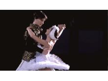 Prins Siegfried och svanprinsessan Odette