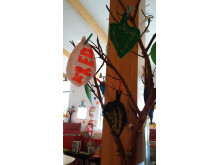 Vänskapsskogen - Bygg din egen Sherwoodskog