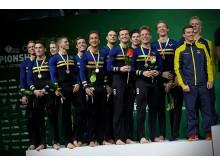 EM i truppgymnastik 2018 herrar