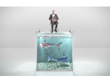 Can you save your CFO from the software licensing sharks?