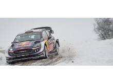 Fiesta WRC