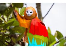 Flygande regnbågstamarin - Vacker och färgsprakande blygis
