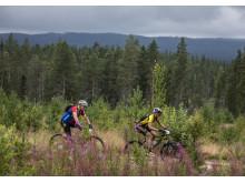 Cykelvasan 90 2019
