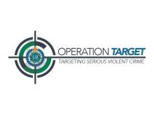 Op Target Large