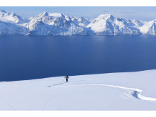 Skiing in Lyngenfjord