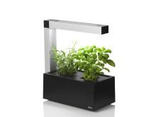 Indoorgarden - Inomhusväxthus