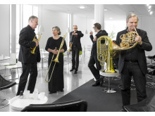 Linnékvintetten (spelar med Martin Hederos och Nina Persson)